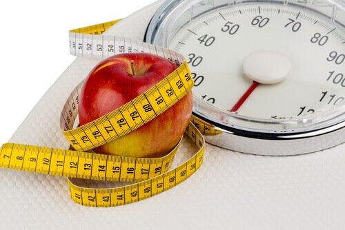 هل التفاح يزيد الوزن ؟