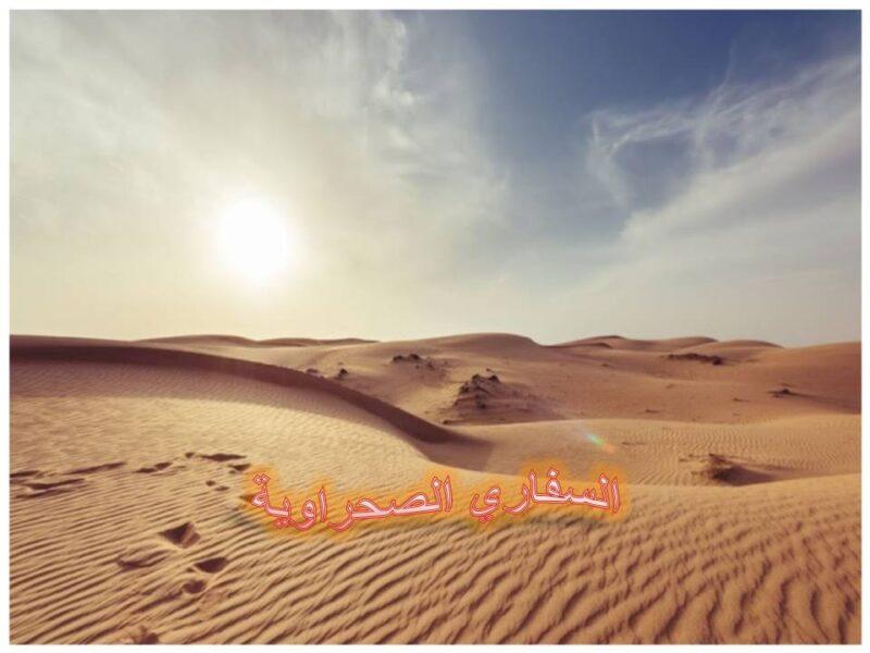 نصائح مهمة لرحلة سفاري في الصحراء